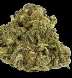 Buy Godfather OG Kush Online | Buy Godfather OG weed Online | Buy Godfather OG Flower Online