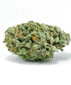 Buy Skywalker OG Kush online | Buy Skywalker OG Marijuana Strain Online | Buy Skywalker OG weed Online