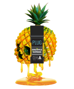 Buy Pineapple Express Plug Play Pod online