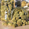 Buy Kansas city kush online | Buy Kansas City Marijuana Strain | Buy Kansas City Weed Online | Buy Kansas Flower online